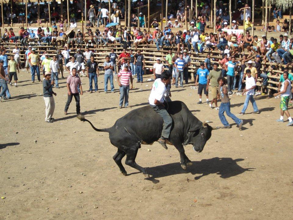 Fiestas 25 de Julio 2013.