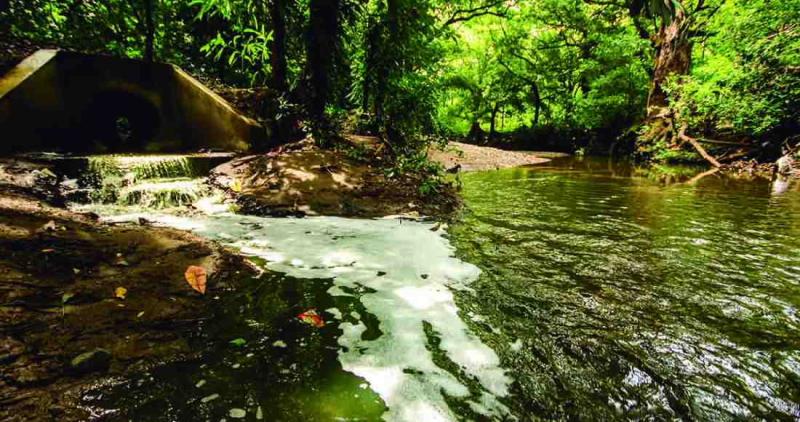 AyA reconoce que planta de tratamiento contamina río Grande en Nicoya