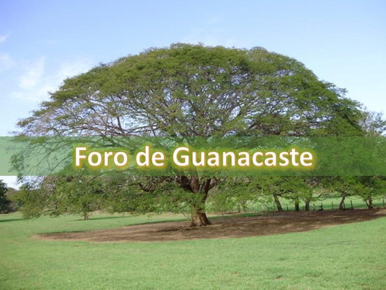 Foro de Guanacaste anuncia nueva jornada de trabajo este domingo 25 de agosto en Nicoya