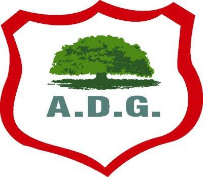 Guanacasteca pierde 1-2 contra Cariari en la Liga de Ascenso