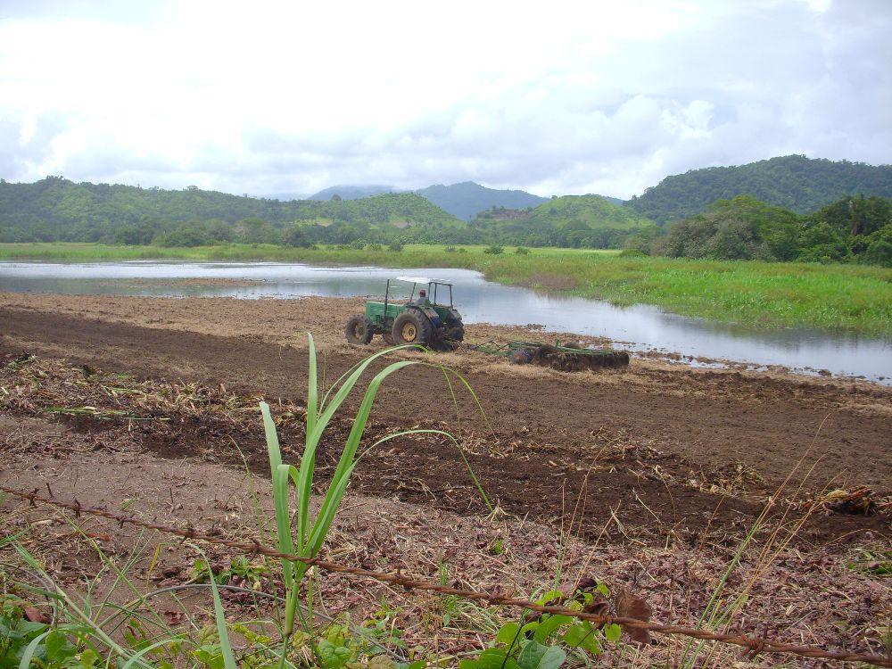 Empresas privadas comprometen desarrollo ambiental del Humedal Caletas