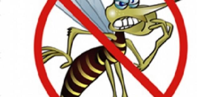 MEP emprende cruzada educativa nacional contra el dengue