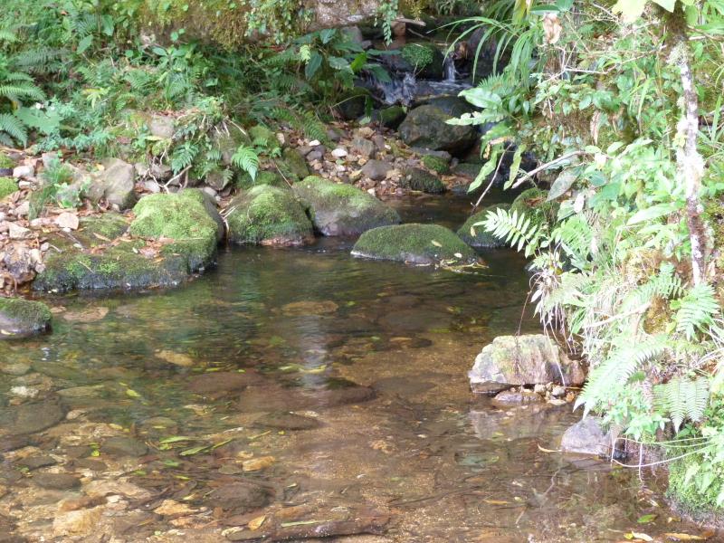 AyA acusada de irrespetar derechos de Acueductos Rurales en Guanacaste