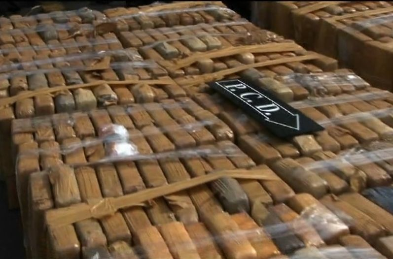 PCD decomisa 596 kilos de cocaína en Peñas Blancas