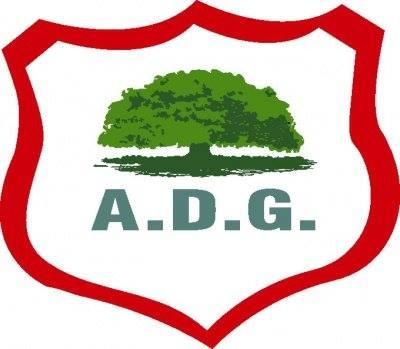 ADG Guanacasteca Golea 4-0 a Siquirres y se mantiene en los primeros lugares de la Liga de Ascenso