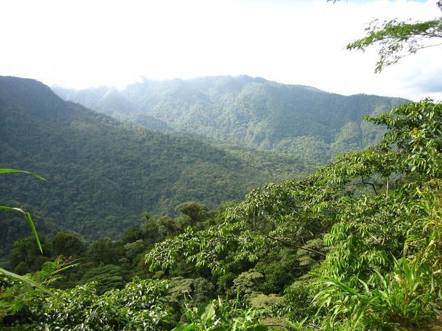 Áreas de Conservación Guanacaste; recibirá nuevos vehículos para protección de flora y fauna