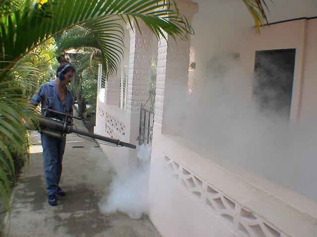 Ministerio de Salud esperan tener controlada la epidemia de dengue en noviembre