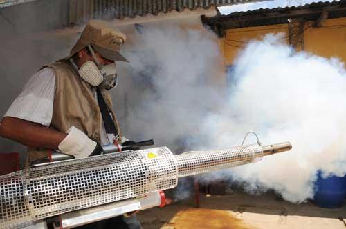 Cantones de Santa Cruz, Carrillo y Liberia serán fumigados casa por casa contra el dengue, la próxima semana